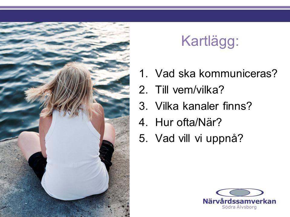 Kartlägg: 1.Vad ska kommuniceras? 2.Till vem/vilka? 3. Vilka kanaler finns? 4. Hur ofta/När? 5. Vad vill vi uppnå?