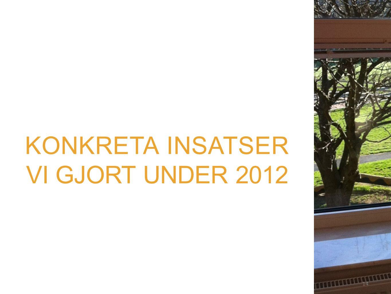 14 KONKRETA INSATSER VI GJORT UNDER 2012