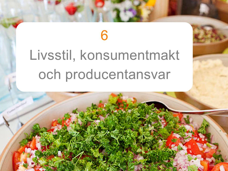 6 Livsstil, konsumentmakt och producentansvar