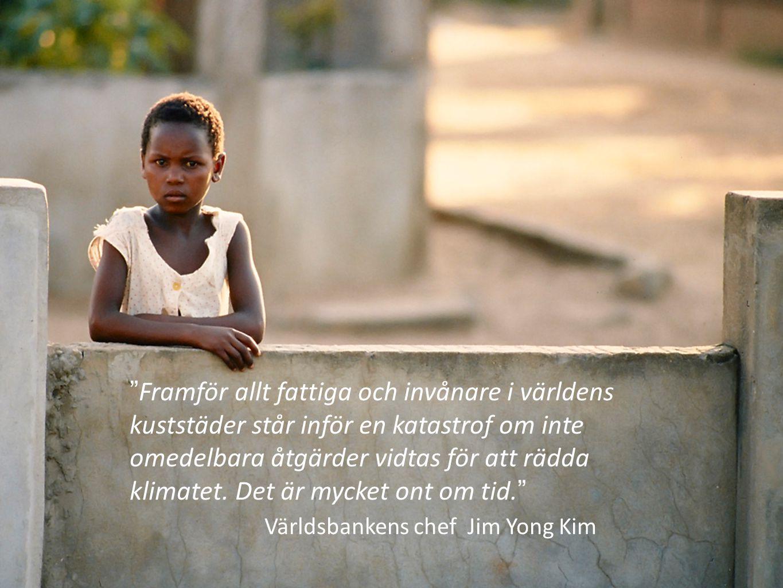 """""""Framför allt fattiga och invånare i världens kuststäder står inför en katastrof om inte omedelbara åtgärder vidtas för att rädda klimatet. Det är myc"""