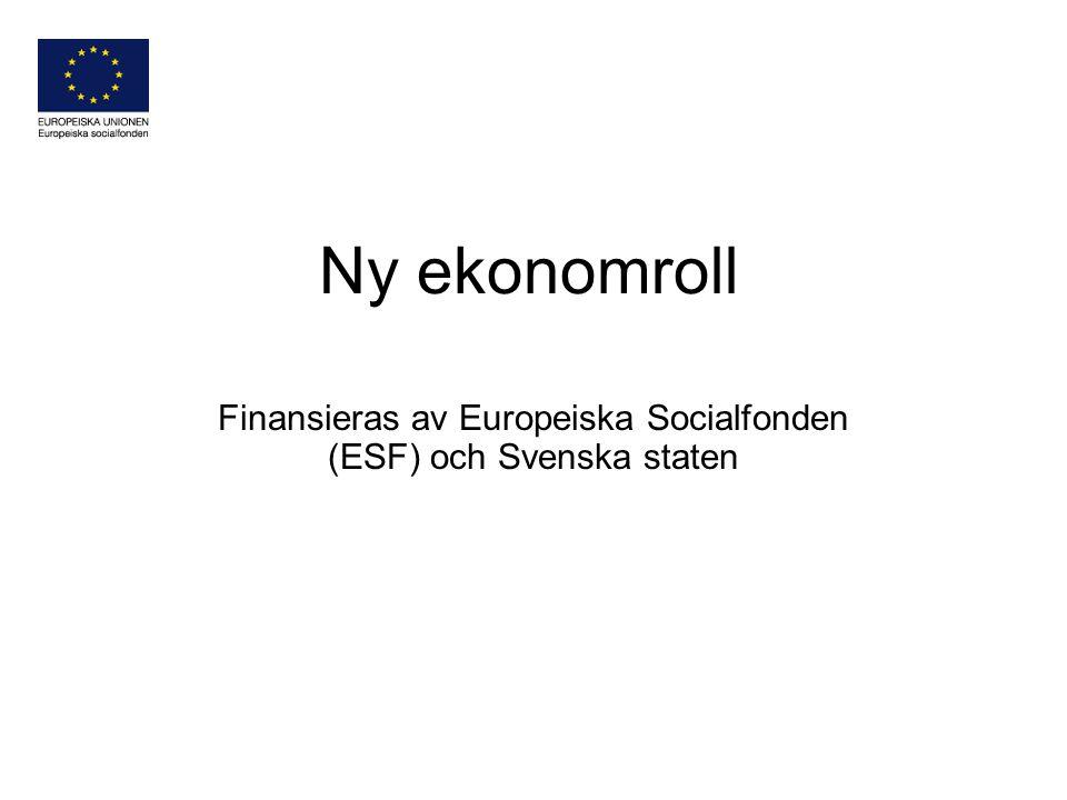 Ny ekonomroll Finansieras av Europeiska Socialfonden (ESF) och Svenska staten