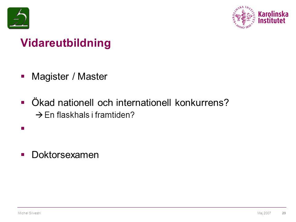 Maj 2007Michel Silvestri29 Vidareutbildning  Magister / Master  Ökad nationell och internationell konkurrens?  En flaskhals i framtiden?  Doktorse