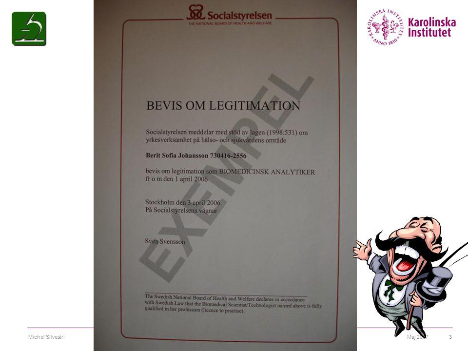 Maj 2007Michel Silvestri14 Biomedicinsk analytikerexamen SFS2006:1053 Biomedicinsk analytikerexamen  Omfattning  Mål  Kunskap och förståelse  Färdighet och förmåga  Värderingsförmåga och förhållningssätt  Självständigt arbete (examensarbete)  Övrigt