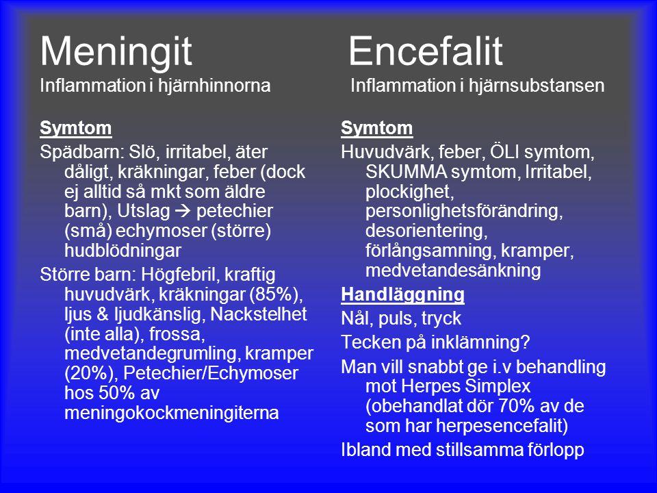 Meningit Encefalit Inflammation i hjärnhinnorna Inflammation i hjärnsubstansen Symtom Spädbarn: Slö, irritabel, äter dåligt, kräkningar, feber (dock e