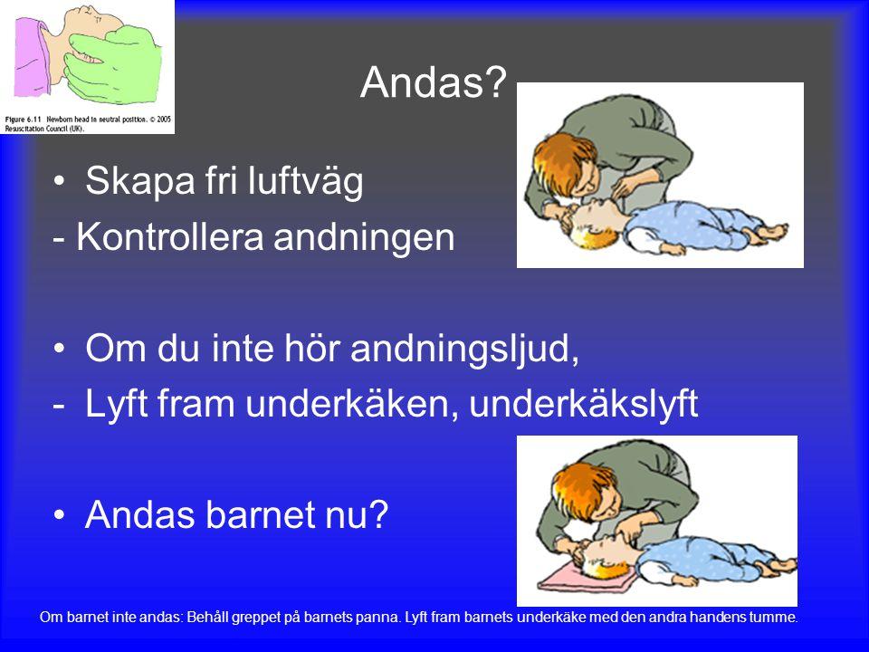 Andas inte // Andas inte normalt Håll kvar fri luftväg Gör 5 långsamma inblåsningar -Den luft som ryms i din egen mun är ofta tillräcklig för en inblåsning på ett spädbarn -Se till att bröstkorgen höjer och sänker sig Om det inte går att få in luft: HLR 15:2 Titta i munnen