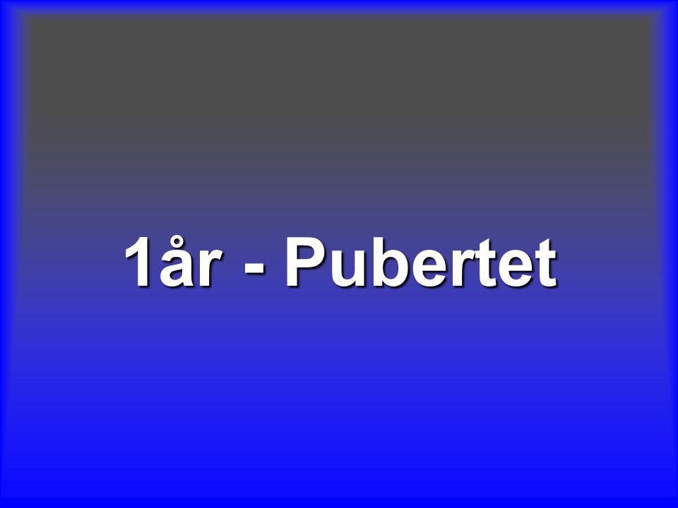 1år - Pubertet