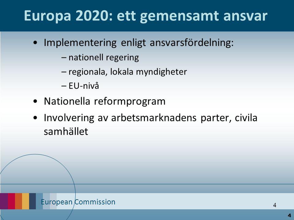 European Commission 4 Europa 2020: ett gemensamt ansvar Implementering enligt ansvarsfördelning: – nationell regering – regionala, lokala myndigheter