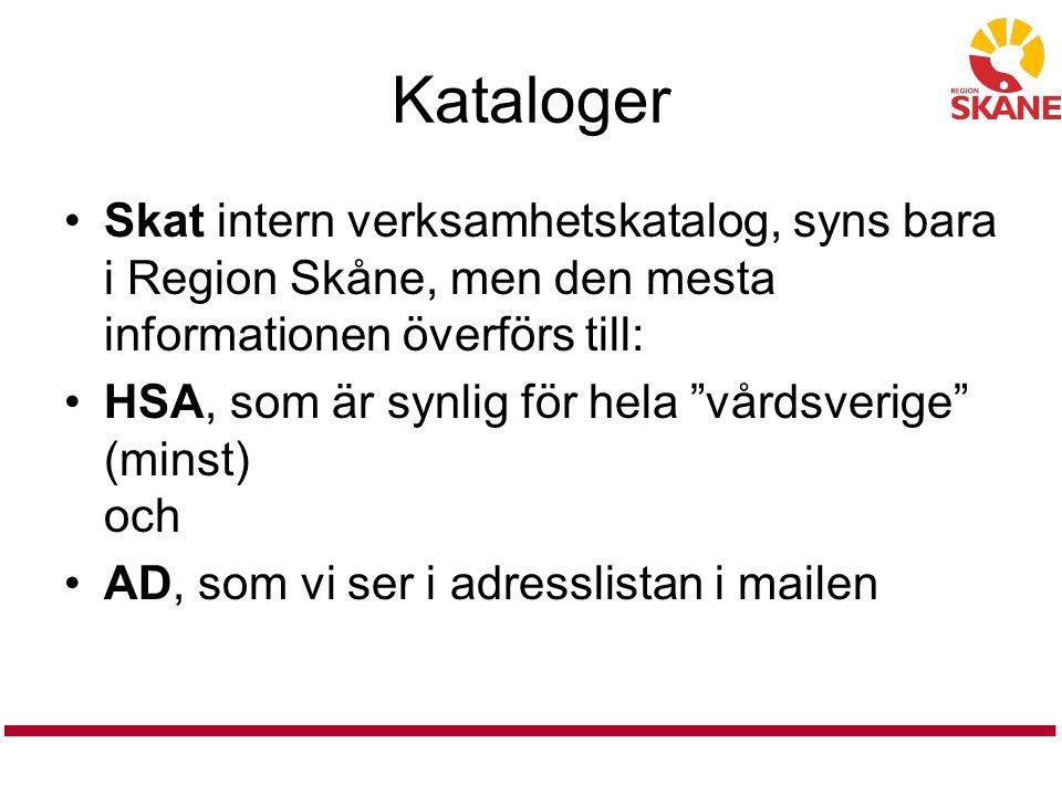 """Kataloger Skat intern verksamhetskatalog, syns bara i Region Skåne, men den mesta informationen överförs till: HSA, som är synlig för hela """"vårdsverig"""