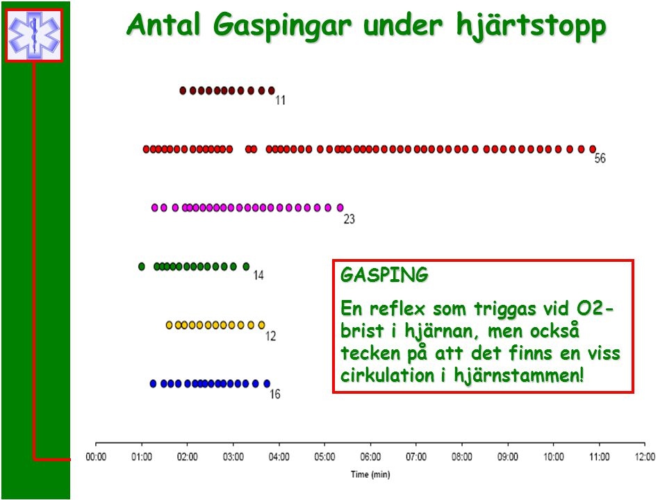 Prehospital Hjärt-Lung Räddning i Skåne GASPING En reflex som triggas vid O2- brist i hjärnan, men också tecken på att det finns en viss cirkulation i hjärnstammen.