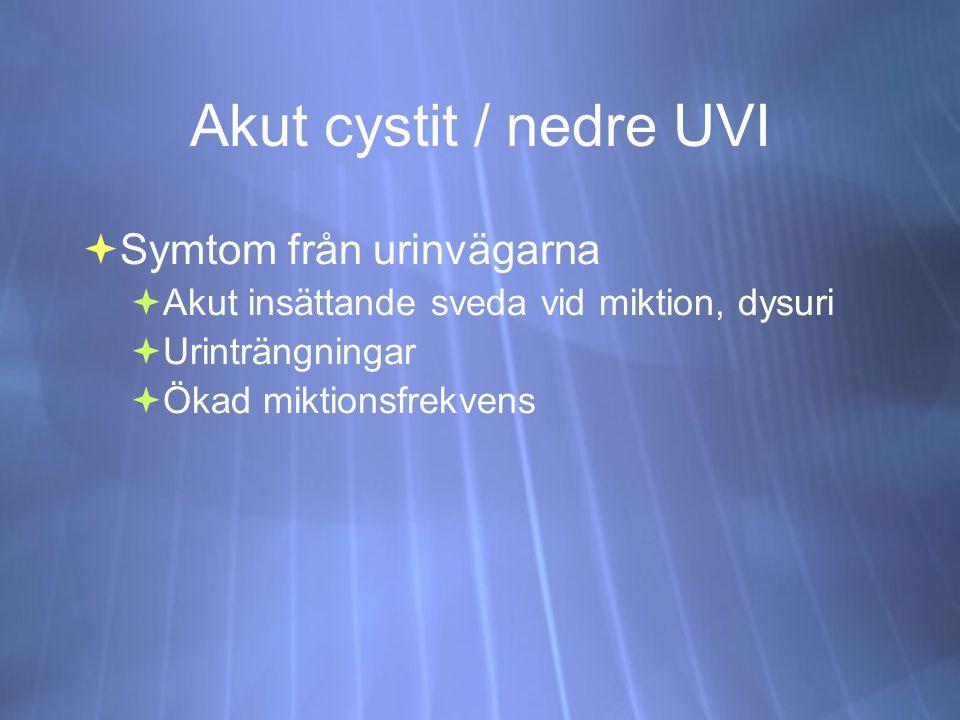 Akut cystit / nedre UVI  Symtom från urinvägarna  Akut insättande sveda vid miktion, dysuri  Urinträngningar  Ökad miktionsfrekvens  Symtom från urinvägarna  Akut insättande sveda vid miktion, dysuri  Urinträngningar  Ökad miktionsfrekvens