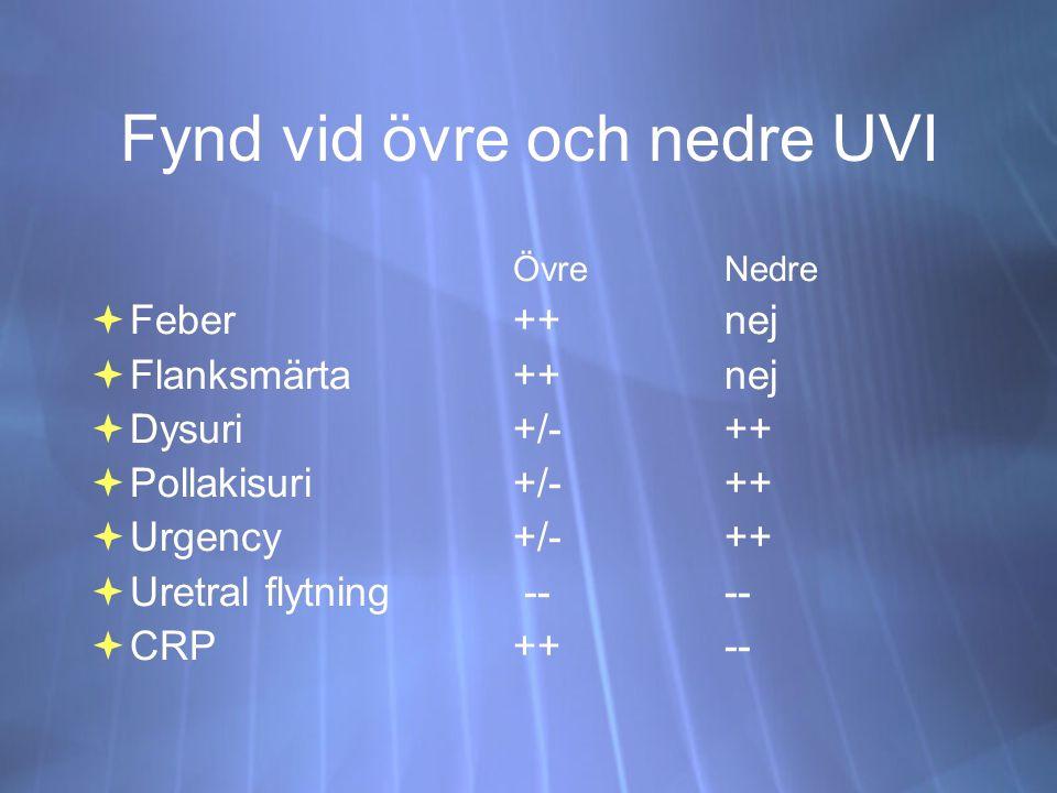 Fynd vid övre och nedre UVI ÖvreNedre  Feber++nej  Flanksmärta++nej  Dysuri+/-++  Pollakisuri +/-++  Urgency+/-++  Uretral flytning ----  CRP ++-- ÖvreNedre  Feber++nej  Flanksmärta++nej  Dysuri+/-++  Pollakisuri +/-++  Urgency+/-++  Uretral flytning ----  CRP ++--