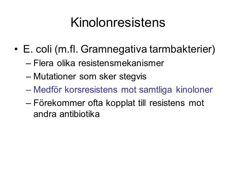 Kinolonresistens E. coli (m.fl. Gramnegativa tarmbakterier) –Flera olika resistensmekanismer –Mutationer som sker stegvis –Medför korsresistens mot sa