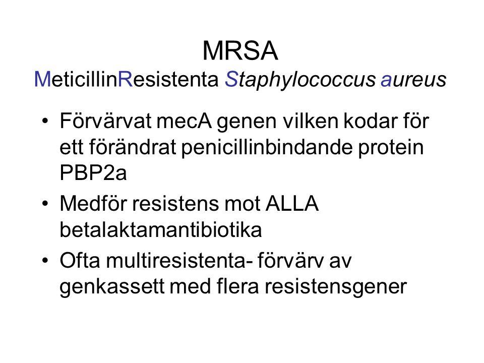 MRSA MeticillinResistenta Staphylococcus aureus Förvärvat mecA genen vilken kodar för ett förändrat penicillinbindande protein PBP2a Medför resistens