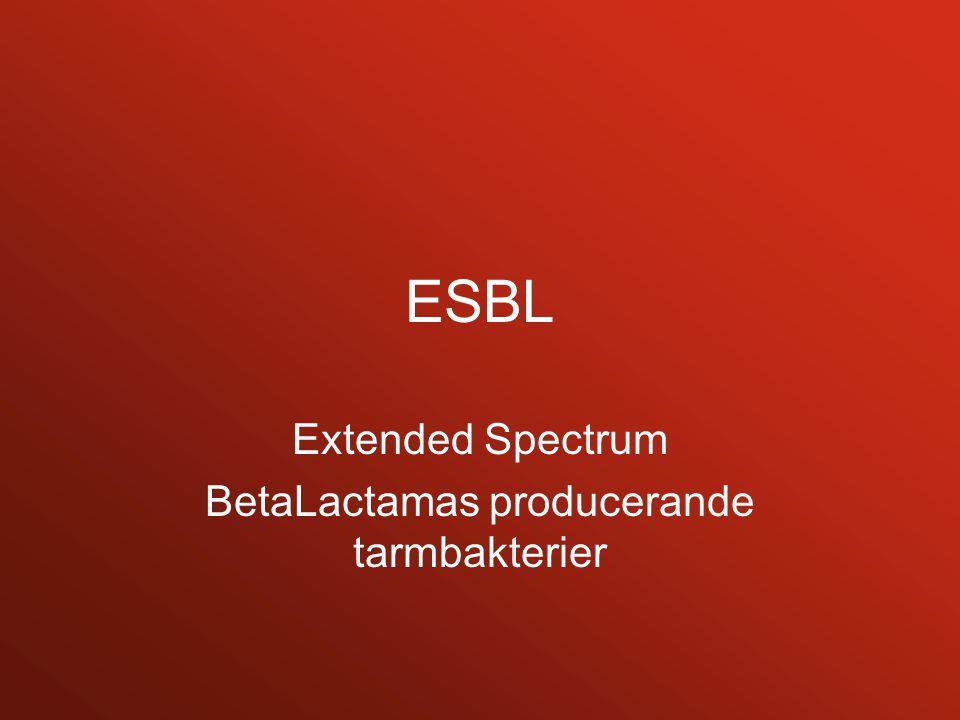 ESBL Extended Spectrum BetaLactamas producerande tarmbakterier