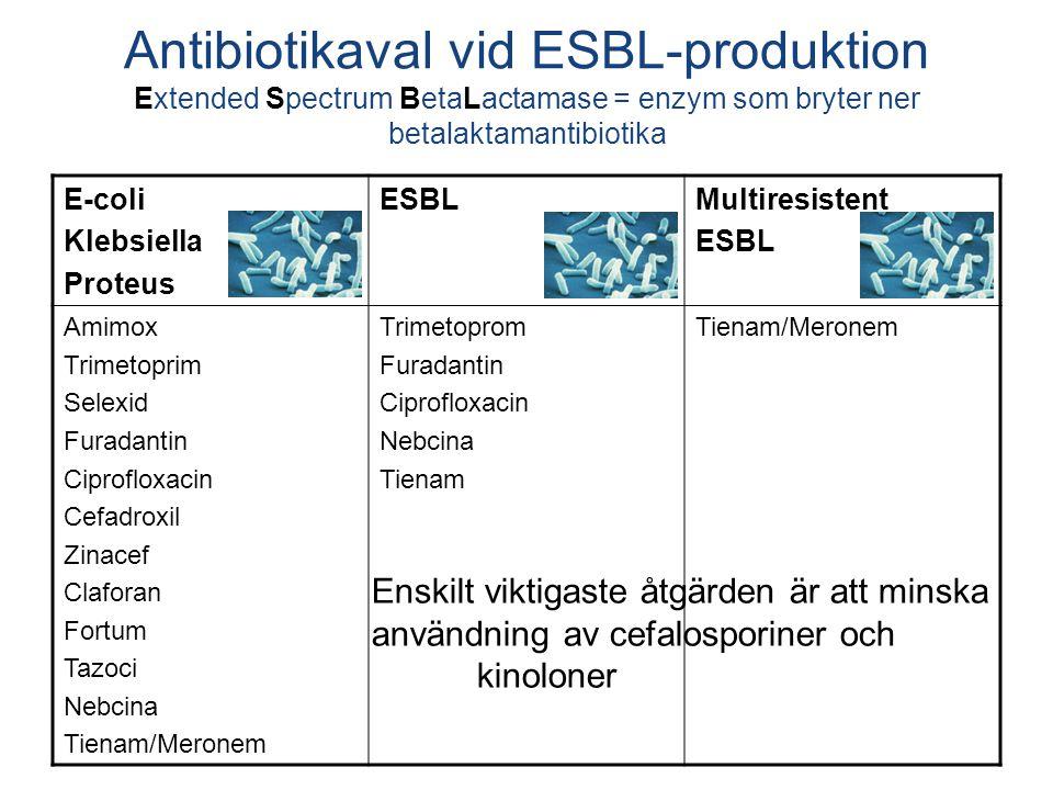 E-coli Klebsiella Proteus ESBLMultiresistent ESBL Amimox Trimetoprim Selexid Furadantin Ciprofloxacin Cefadroxil Zinacef Claforan Fortum Tazoci Nebcin
