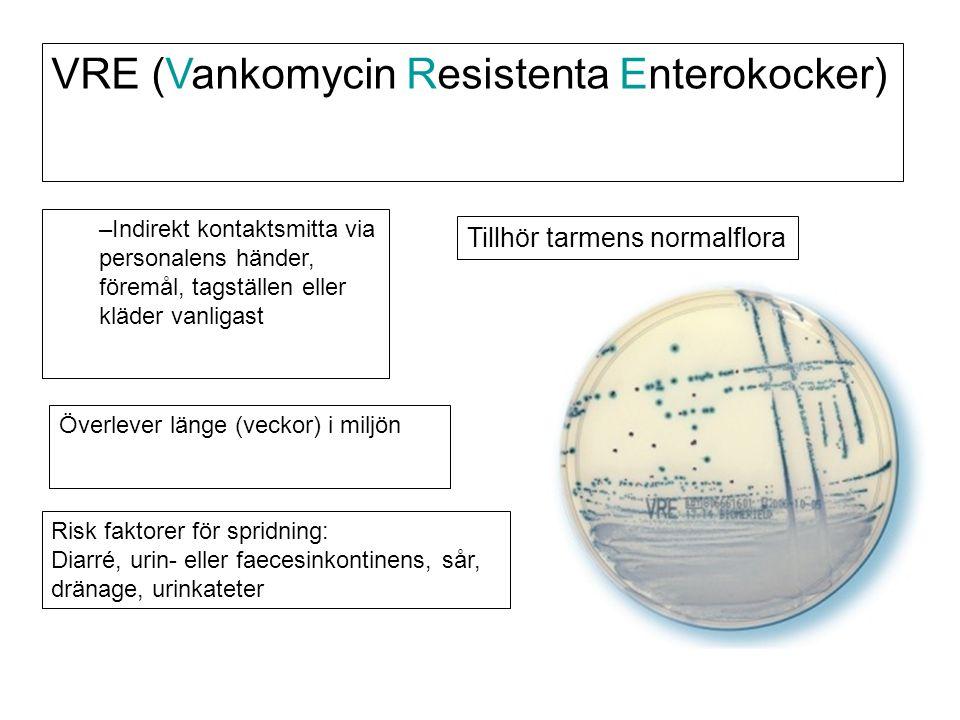 VRE (Vankomycin Resistenta Enterokocker) Överlever länge (veckor) i miljön Risk faktorer för spridning: Diarré, urin- eller faecesinkontinens, sår, dr