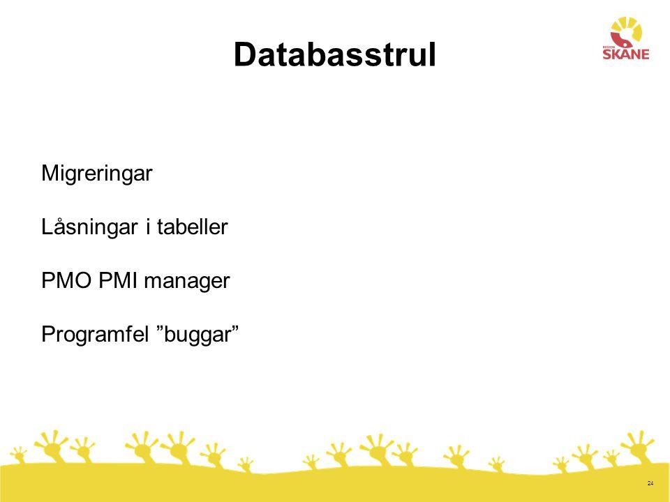 24 Databasstrul Migreringar Låsningar i tabeller PMO PMI manager Programfel buggar