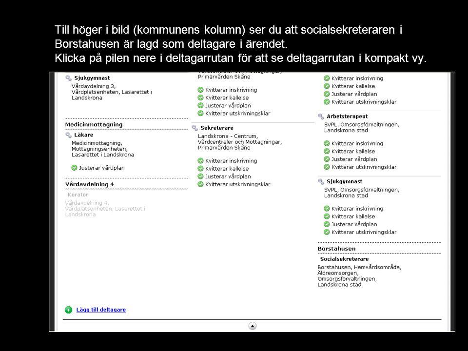 Till höger i bild (kommunens kolumn) ser du att socialsekreteraren i Borstahusen är lagd som deltagare i ärendet.