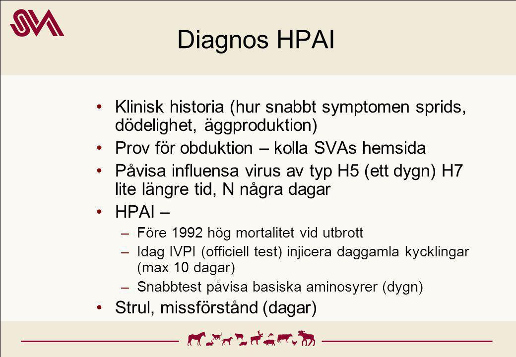 Diagnos HPAI Klinisk historia (hur snabbt symptomen sprids, dödelighet, äggproduktion) Prov för obduktion – kolla SVAs hemsida Påvisa influensa virus av typ H5 (ett dygn) H7 lite längre tid, N några dagar HPAI – –Före 1992 hög mortalitet vid utbrott –Idag IVPI (officiell test) injicera daggamla kycklingar (max 10 dagar) –Snabbtest påvisa basiska aminosyrer (dygn) Strul, missförstånd (dagar)