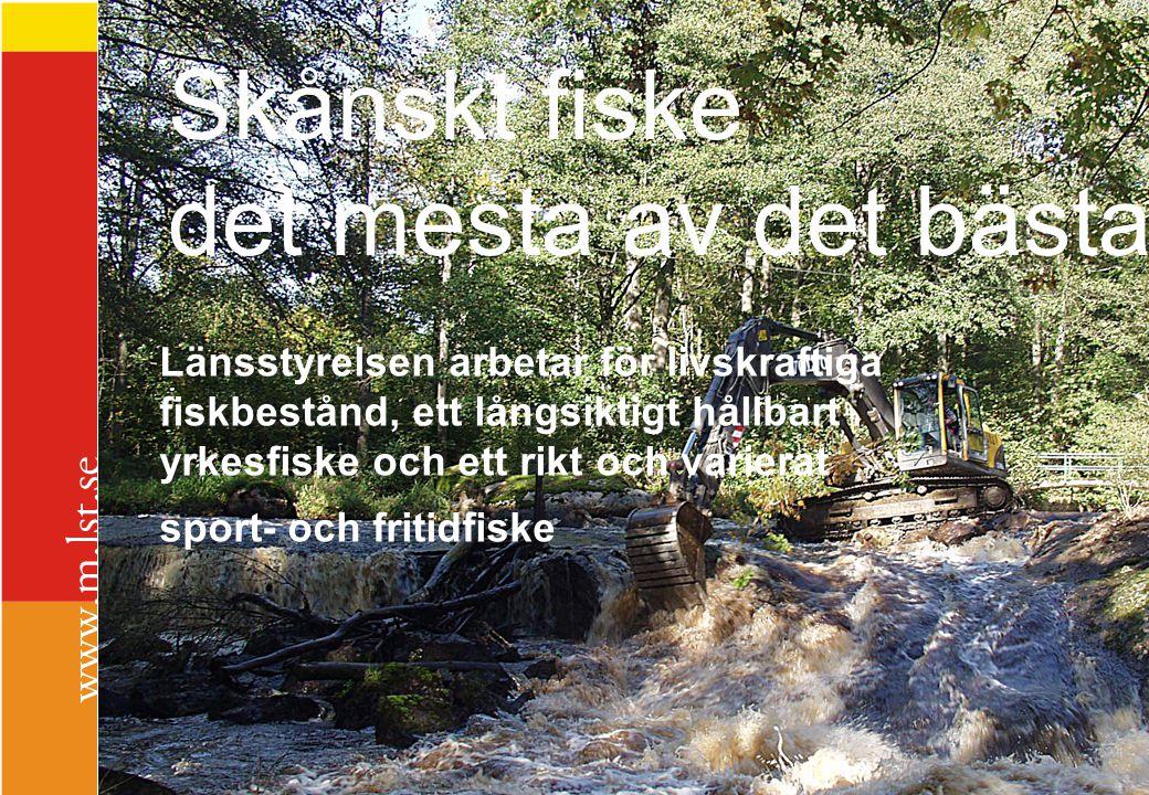 Uppströms bron vid Hyllstofta, vid nolltappning från Ebbarp, 2007-10-28, kl 13.41 Uppströms bron vid Hyllstofta, vid full tappning från Ebbarp, 2007-10-28, kl 14.05.