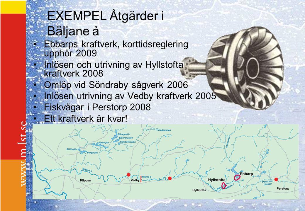 EXEMPEL Åtgärder i Bäljane å Ebbarps kraftverk, korttidsreglering upphör 2009 Inlösen och utrivning av Hyllstofta kraftverk 2008 Omlöp vid Söndraby så
