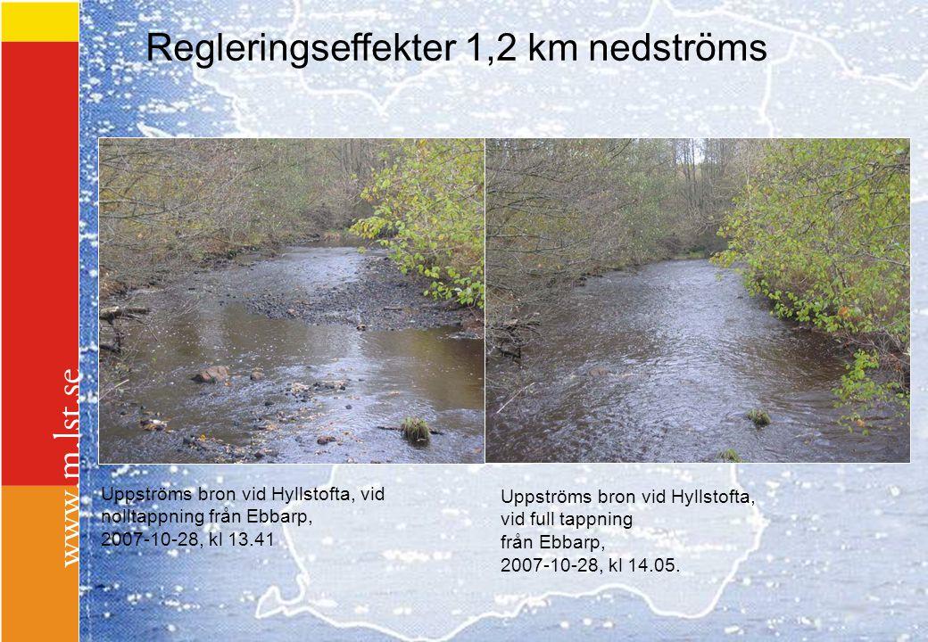 Uppströms bron vid Hyllstofta, vid nolltappning från Ebbarp, 2007-10-28, kl 13.41 Uppströms bron vid Hyllstofta, vid full tappning från Ebbarp, 2007-1