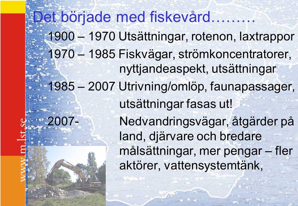 Det började med fiskevård……… 1900 – 1970 Utsättningar, rotenon, laxtrappor 1970 – 1985 Fiskvägar, strömkoncentratorer, nyttjandeaspekt, utsättningar 1