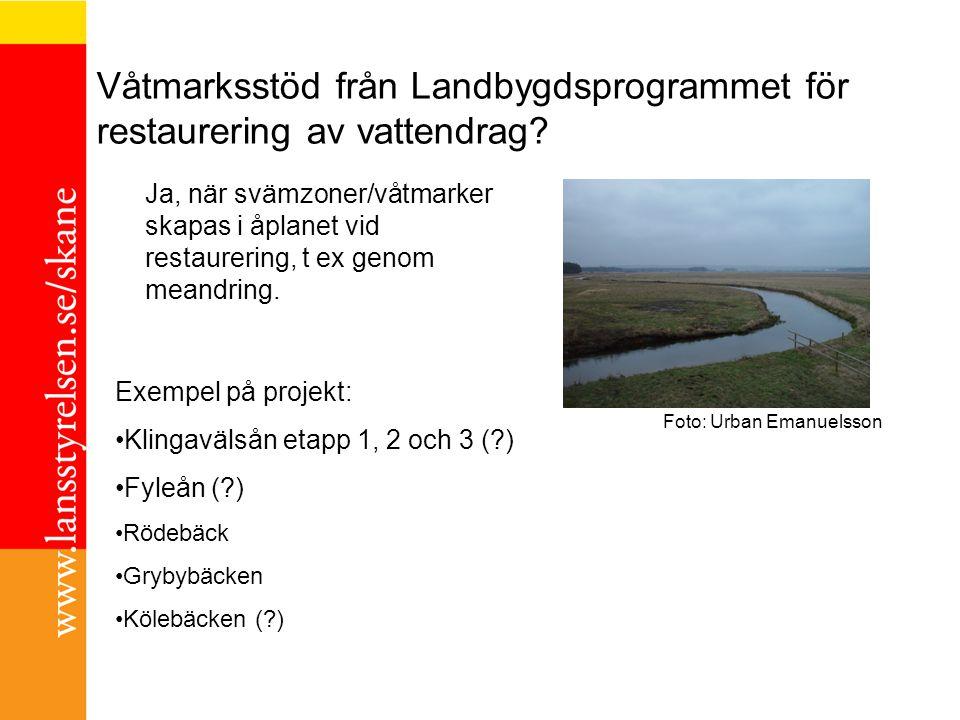 Våtmarksstöd från Landbygdsprogrammet för restaurering av vattendrag? Exempel på projekt: Klingavälsån etapp 1, 2 och 3 (?) Fyleån (?) Rödebäck Grybyb