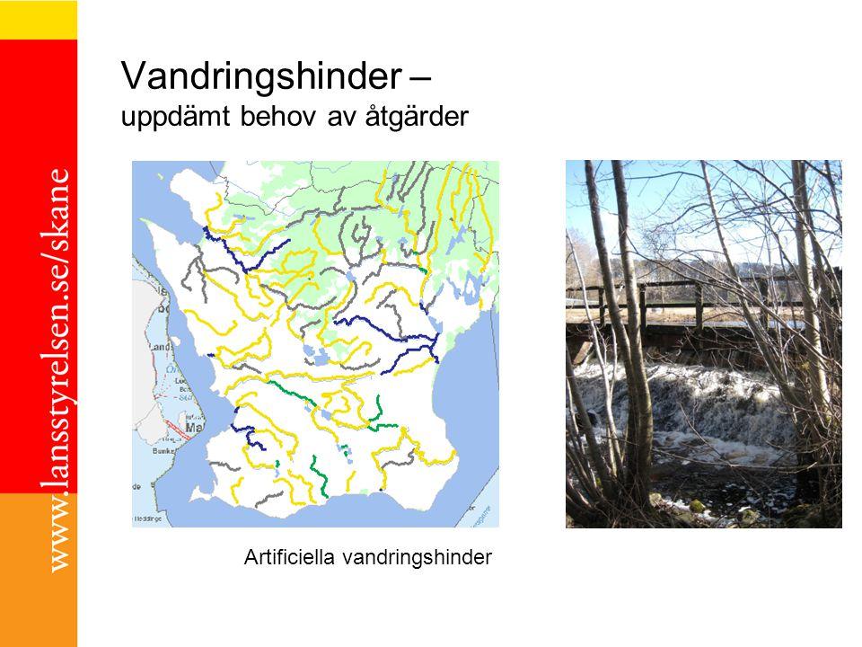 Vandringshinder – uppdämt behov av åtgärder Artificiella vandringshinder