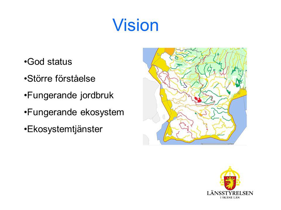 Vision God status Större förståelse Fungerande jordbruk Fungerande ekosystem Ekosystemtjänster