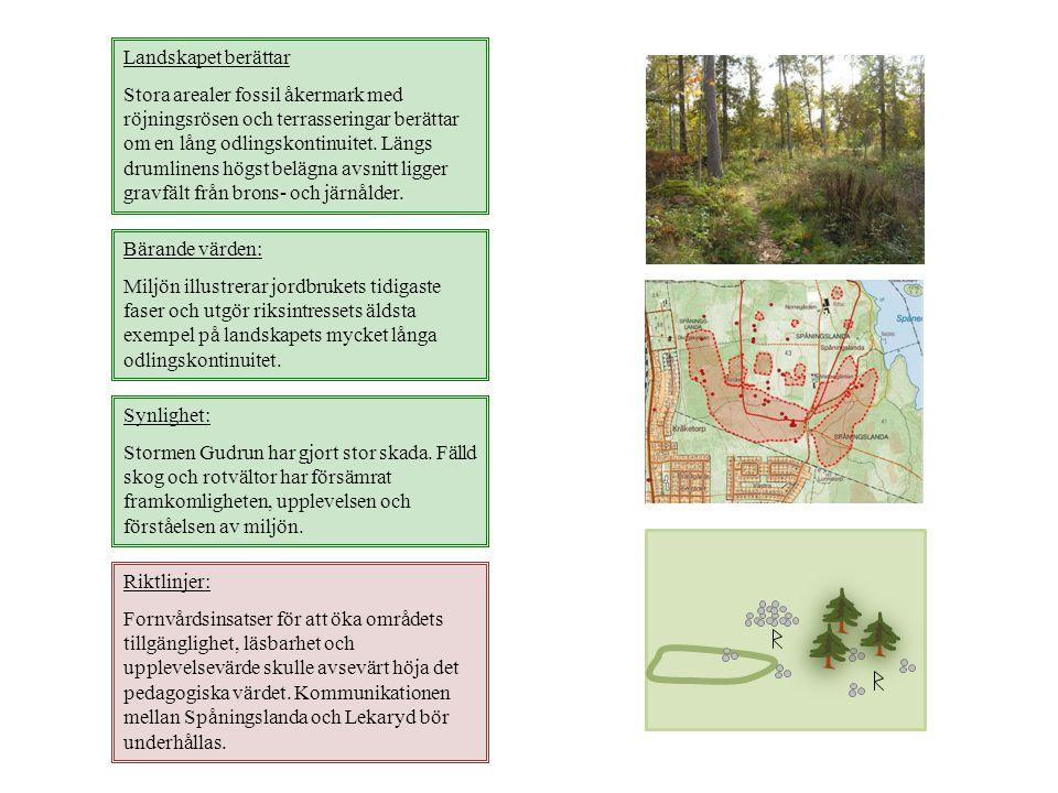 Landskapet berättar Stora arealer fossil åkermark med röjningsrösen och terrasseringar berättar om en lång odlingskontinuitet. Längs drumlinens högst