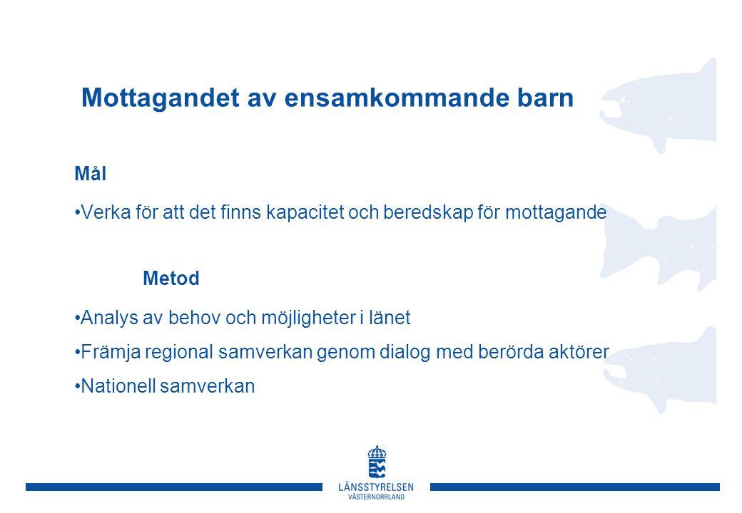 Mottagandet av ensamkommande barn Mål Verka för att det finns kapacitet och beredskap för mottagande Metod Analys av behov och möjligheter i länet Främja regional samverkan genom dialog med berörda aktörer Nationell samverkan