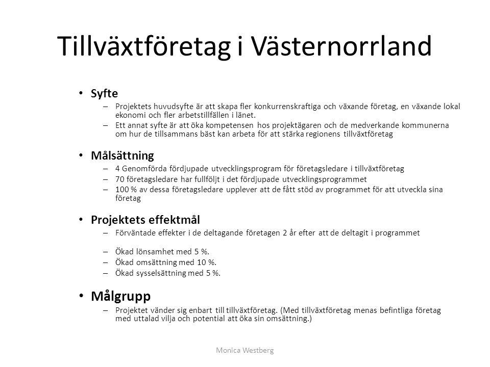 Tillväxtföretag i Västernorrland Syfte – Projektets huvudsyfte är att skapa fler konkurrenskraftiga och växande företag, en växande lokal ekonomi och