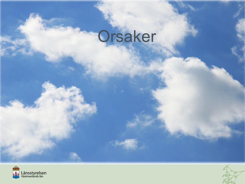 Orsaker