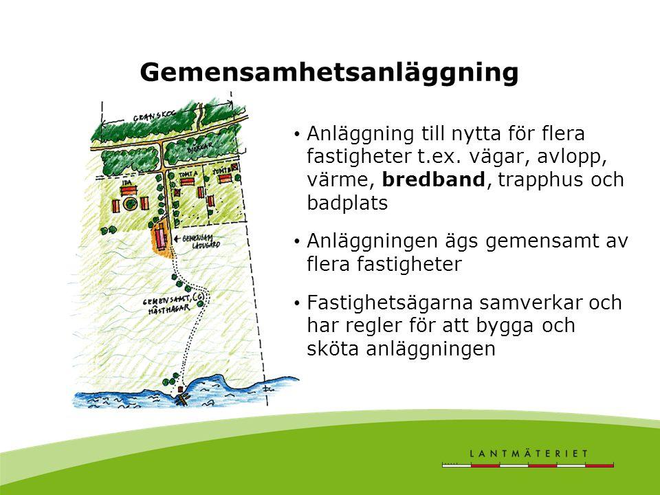 Gemensamhetsanläggning Anläggning till nytta för flera fastigheter t.ex. vägar, avlopp, värme, bredband, trapphus och badplats Anläggningen ägs gemens