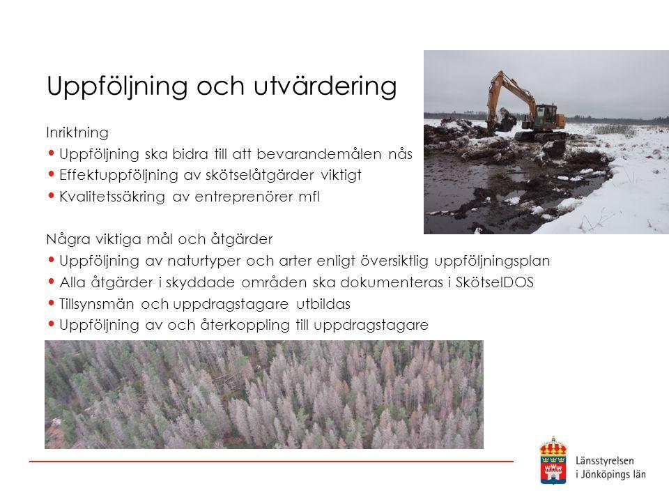 Uppföljning och utvärdering Inriktning Uppföljning ska bidra till att bevarandemålen nås Effektuppföljning av skötselåtgärder viktigt Kvalitetssäkring
