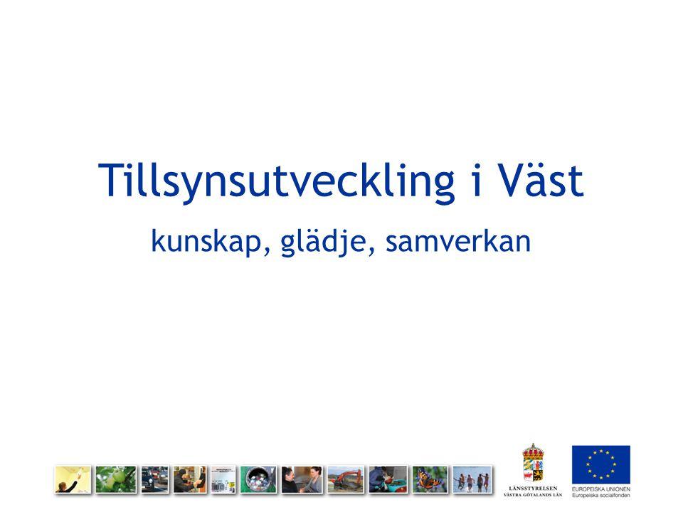 Detta var projektet 999 personer på 50 arbetsplatser Vi arbetar på Västsveriges miljömyndigheter Fokus på de mjuka frågorna Länsstyrelsen i Västra Götaland projektägare, samverkan med många Finansierat av Europeiska Socialfonden September 2011 till februari 2014