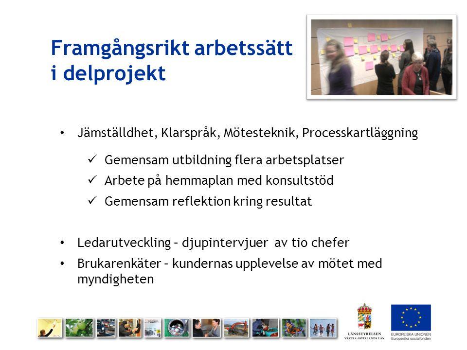 Framgångsrikt arbetssätt i delprojekt Jämställdhet, Klarspråk, Mötesteknik, Processkartläggning Gemensam utbildning flera arbetsplatser Arbete på hemm