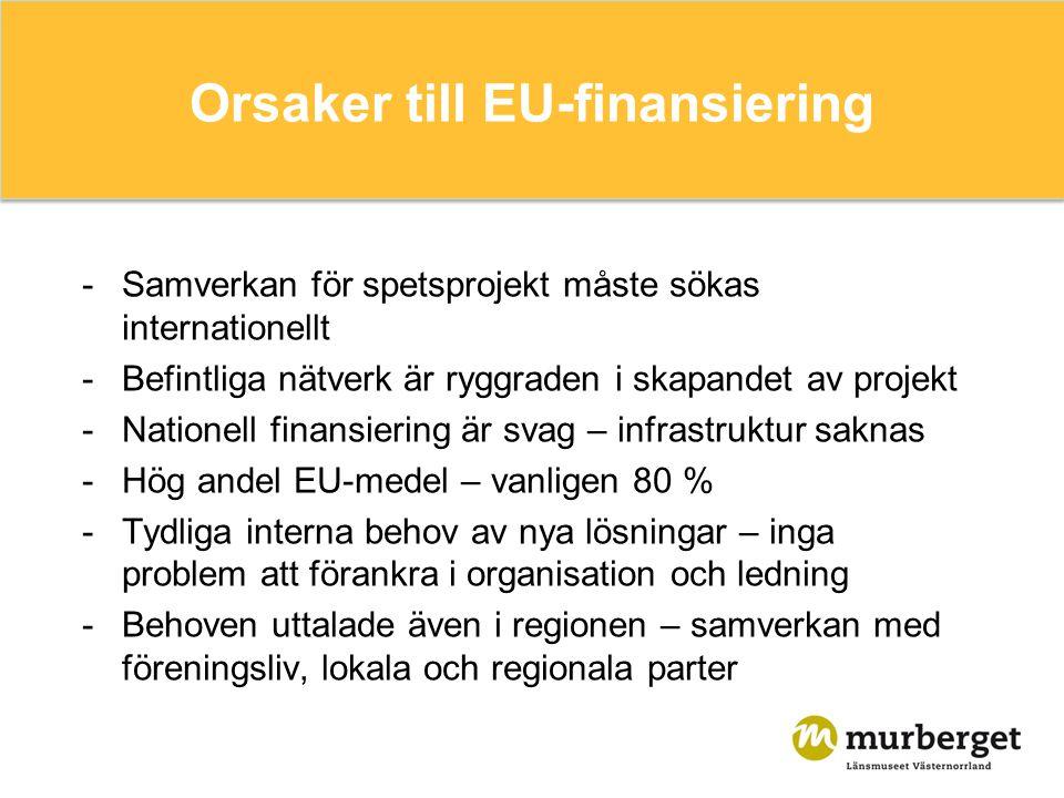 Orsaker till EU-finansiering -Samverkan för spetsprojekt måste sökas internationellt -Befintliga nätverk är ryggraden i skapandet av projekt -Nationell finansiering är svag – infrastruktur saknas -Hög andel EU-medel – vanligen 80 % -Tydliga interna behov av nya lösningar – inga problem att förankra i organisation och ledning -Behoven uttalade även i regionen – samverkan med föreningsliv, lokala och regionala parter