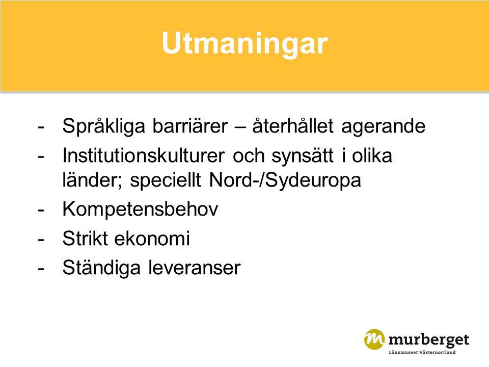 Utmaningar -Språkliga barriärer – återhållet agerande -Institutionskulturer och synsätt i olika länder; speciellt Nord-/Sydeuropa -Kompetensbehov -Strikt ekonomi -Ständiga leveranser