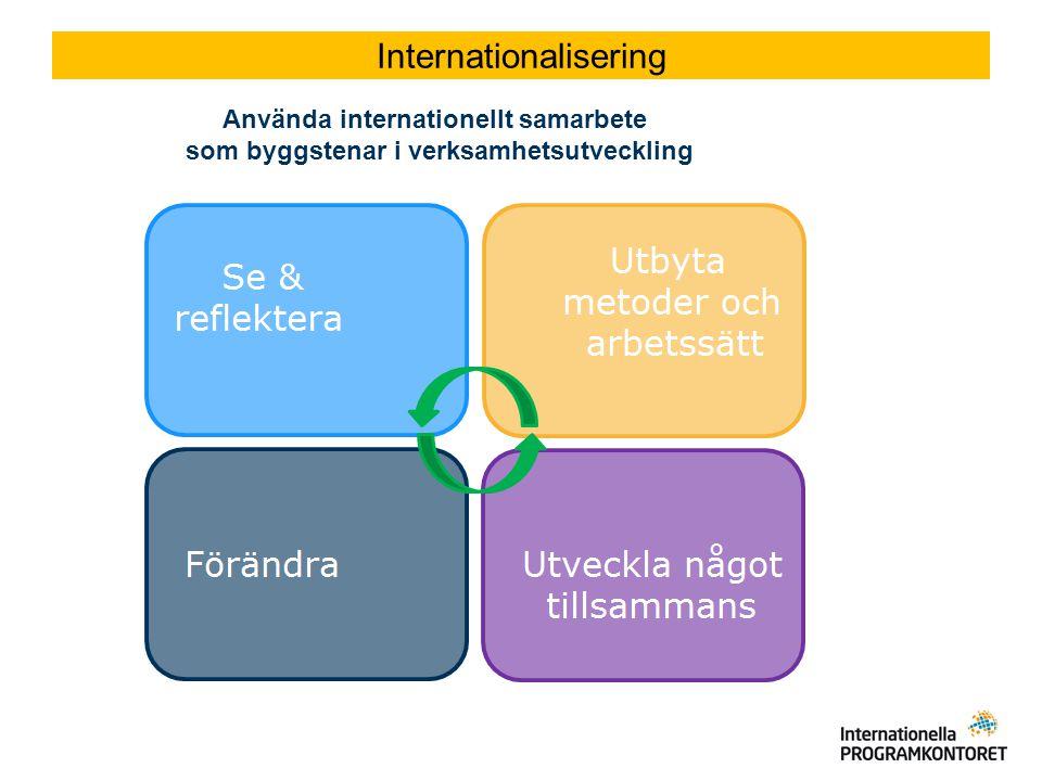 Internationalisering Använda internationellt samarbete som byggstenar i verksamhetsutveckling