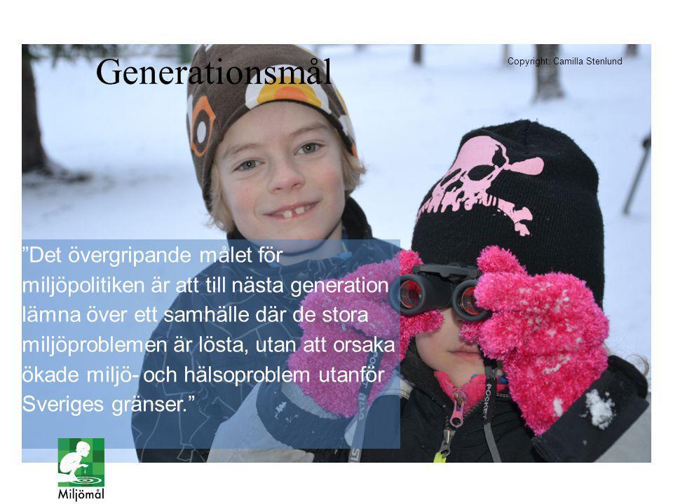 Det övergripande målet för miljöpolitiken är att till nästa generation lämna över ett samhälle där de stora miljöproblemen är lösta, utan att orsaka ökade miljö- och hälsoproblem utanför Sveriges gränser. I ETT FÄGELTORN NÄRA DIG Generationsmål Copyright: Camilla Stenlund