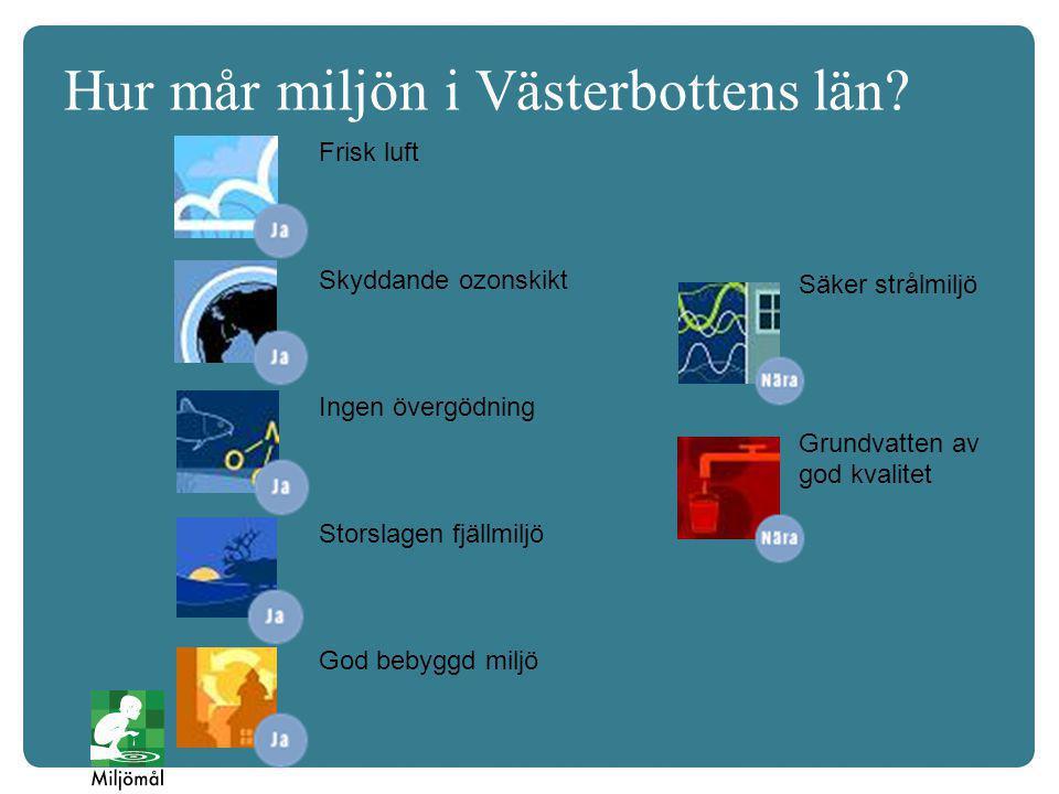 Hur mår miljön i Västerbottens län.