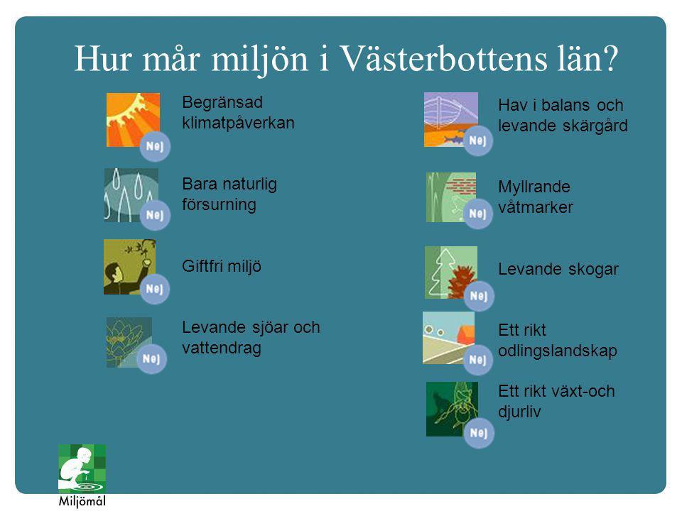 Löfte för Hållbara Västerbotten Generella åtgärder som många olika aktörer kan ställa sig bakom Teckna ett löfte som innehåller åtgärder från åtgärdsprogrammet.