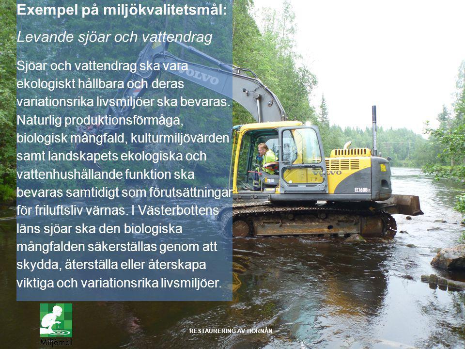 Exempel på miljökvalitetsmål: Levande sjöar och vattendrag Sjöar och vattendrag ska vara ekologiskt hållbara och deras variationsrika livsmiljöer ska bevaras.