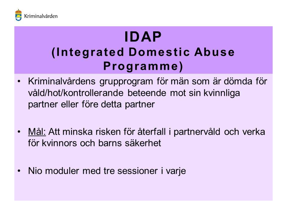 IDAP (Integrated Domestic Abuse Programme) Kriminalvårdens grupprogram för män som är dömda för våld/hot/kontrollerande beteende mot sin kvinnliga par