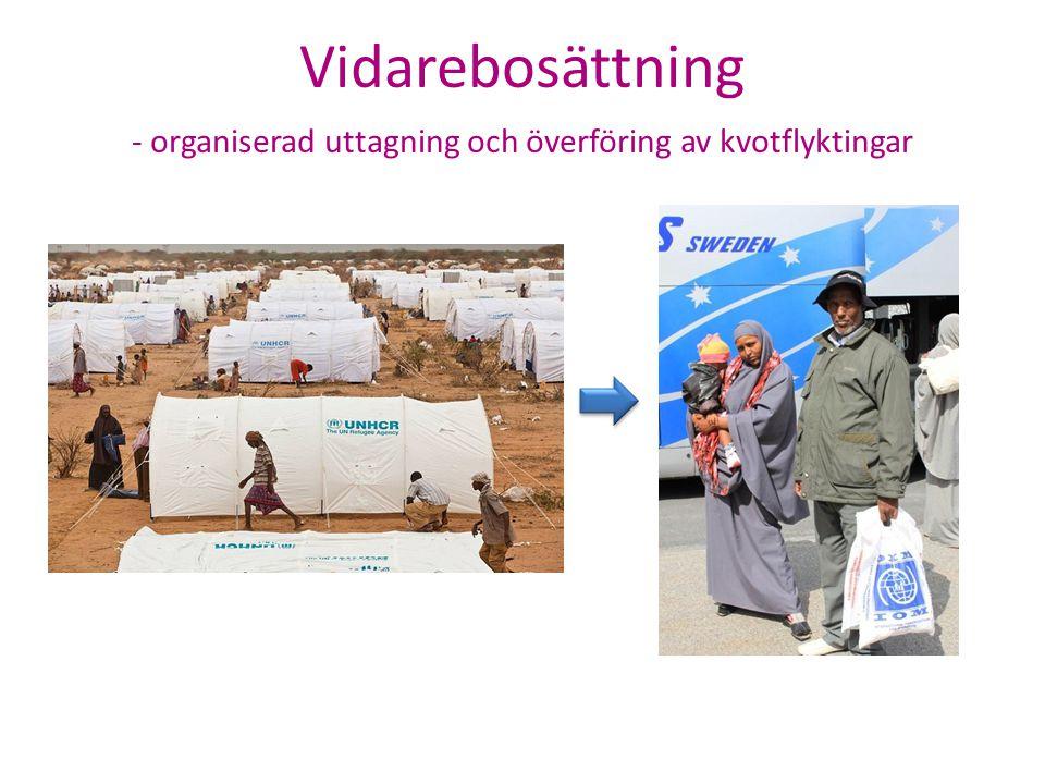 Organiserad uttagning och överföring av kvotflyktingar Presentation Dossier- prövning Beslut Kommunplac.