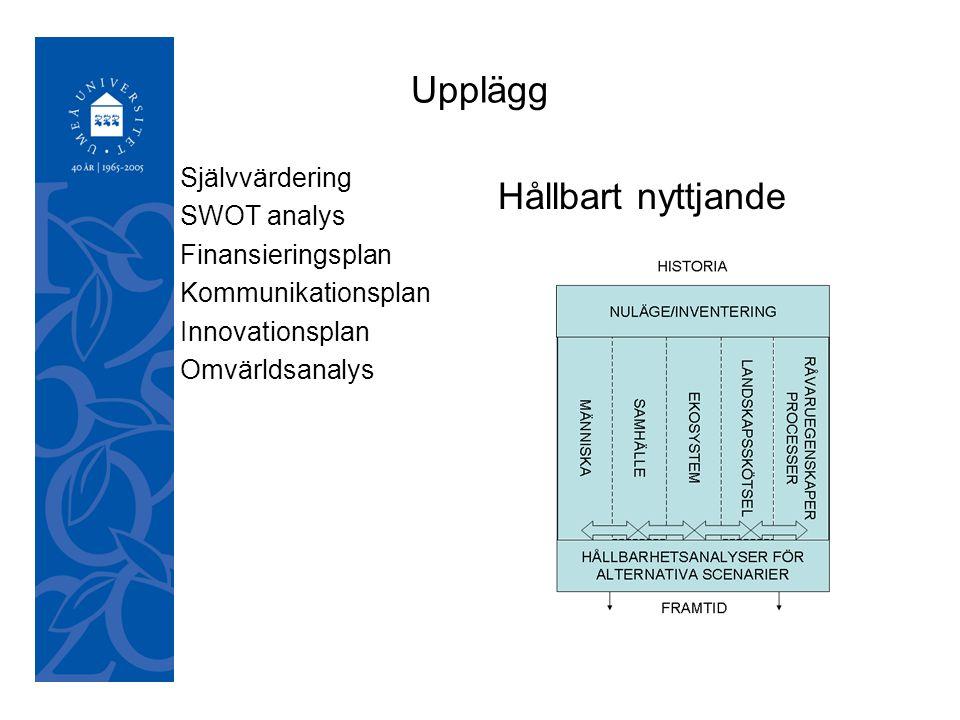 050921 Upplägg Självvärdering SWOT analys Finansieringsplan Kommunikationsplan Innovationsplan Omvärldsanalys Hållbart nyttjande