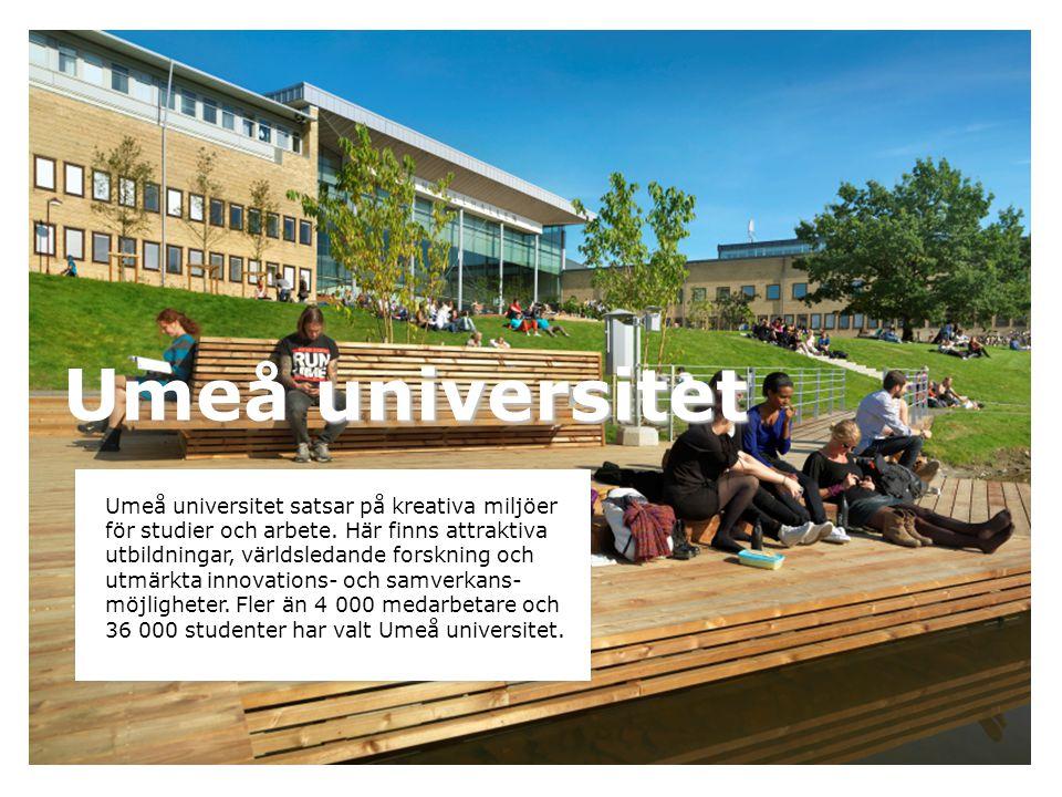 universitet Umeå universitet Umeå universitet satsar på kreativa miljöer för studier och arbete. Här finns attraktiva utbildningar, världsledande fors
