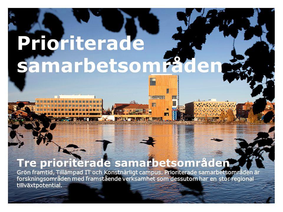 Karriärbidrag till framstående forskare Umeå universitet satsar på unga forskare.